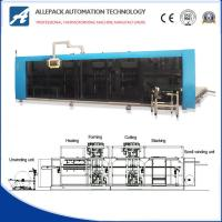 PP / PE / PS Automatic Vacuum Forming Machine Make Plastic Packaging Manufactures