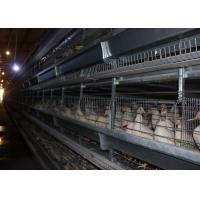 China Eco - Friendly Chicken Egg Laying Equipment High - Density Raising Save Labor on sale