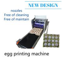 Easy Control Egg Inkjet Marking Machine / Ink Stamping MachineWith Conveyor Manufactures