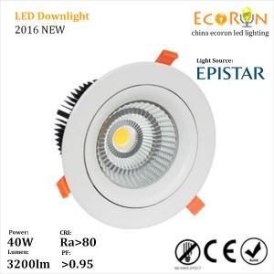 warm white 3000K 4000K 8inch 40 watt led downlight cob adjustable with 24deg 60deg Manufactures