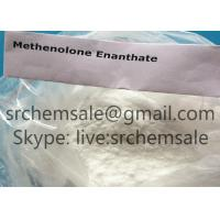 Methenolone Enanthate Primobolan Muscle Building Steroids Raw Material CAS 303-42-4 Anti Estrogen Steroids Manufactures