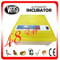 Automatic best quality chicken egg incubator used hatching machine VA-48II for sale Manufactures