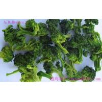 Dehydrated Broccoli Manufactures