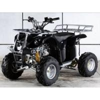 50cc/110cc Air Cooled Full Automatic ATV for Children Manufactures