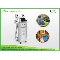 New Year best seller high performance 4 heads cryolipolysis slimming lipolaser Manufactures