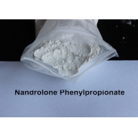 China Safe / Injectable Nandrolone Phenylpropionate Raw Powder Source Npp Durabolin 100mg on sale