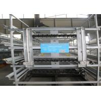Galvanized A Type Baby Chick Cage Advanced Automatic Operation System for sale