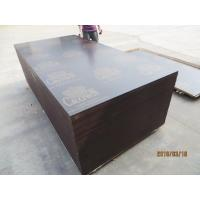 CROWN BRAND FILM FACED PLYWOOD, COMBI CORE, WBP GLUE。good quality low price CROWN  brand film faced plywood Manufactures