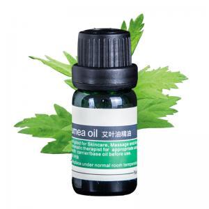 Blumea oil 100% Pure, Best Therapeutic Grade Essential Oil - 100ml