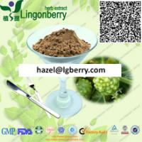 Quality Natural Noni fruit extract/ Morinda citrifolia extract powder for sale
