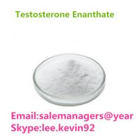 Purity 99% Testosterone Enanthate CAS 315-37-7 Test Enan Raw Powder Manufactures