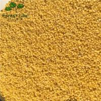 Shaanbei Glutinous Yellow Millet Green Agriculture Products Healthy Organic Crops Foxtail Millet Healthy Organic Crops