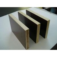9mm 12mm 15mm 18mm 21mm brown film black film faced plywood marine plywood shuttering plywood Manufactures
