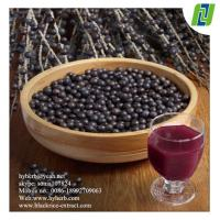 antioxidant keepling slim Natural Acai Berry Extract Manufactures