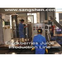 Buy cheap Blackberries Juice Production Line from wholesalers