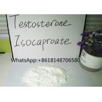 Testosterone Raw Powder Isocaproate Bodybuilding Test ISO Steroid Pass Customs Manufactures