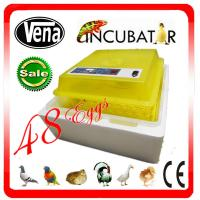 2014 CE approved full automatic small plastic incubator egg tray VA-48(12V) Manufactures