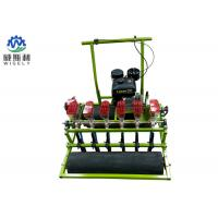 6 Rows Vegetable Planting Equipment Onion Agriculture Planting ISO Certification Manufactures
