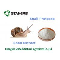 Snail Extract Natural Cosmetics Raw Materials , Organic Cosmetic Ingredients Manufactures