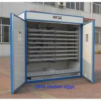 mid-size cheap automatic egg incubator factory price Manufactures