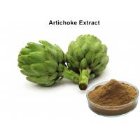 China Artichoke Leaf Extract Plant Extract Powder Cynarin And Chlorogenic Acid For Weight Loss on sale