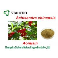 Chinese Magnolia Vine Fruit Antibacterial Plant Extracts , Herbal Extract Powder Manufactures