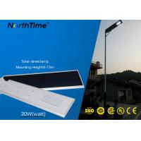 Residential All In One Solar LED Street Light 30W 6-7.5 M Pole Height Manufactures