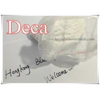 Muscle Growth Steroid Deca / Nandrolone Decanoate / Deca-Durabolin / ND 360-70-3 Manufactures