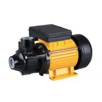 1.5HP  Domestic Electric Motor Water Pump with Max Pressure 10 Bar Suction Head Manufactures