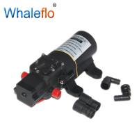 China Whaleflo FLO Series Micro DC Diaphragm Pumps 12VDC 3.8L/MIN 35PSI 3.0 Amps Small Water sprayer pump for agriculture on sale