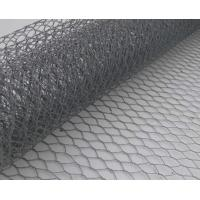 Hot Dipped Galvanized Chicken Wire Mesh 25mm with Recycled Manufactures