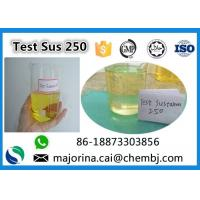 Quality Testosterone Sustanon 250 / Test Sus 250 Mix Test Steroids Yellow Oils for sale