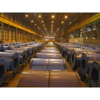 Custom Cut Deep Drawing Cold Rolled Steel Coils SPCD / SPCE / DC03 Manufactures
