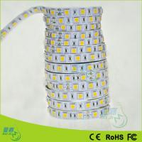 Flexible Waterproof LED Rope Lights Manufactures