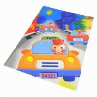 File Folder with Colorful Printing Manufactures