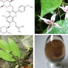China Horny goat weed extact / Epimedium PE Icariin 10%-98% on sale
