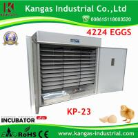 Fully Automatic Cheap Holding 4000 Eggs Chicken Incubator (KP-23) Manufactures