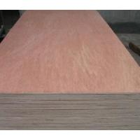 9mm Binangor Plywood Manufactures
