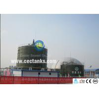 Quality Durability Biogas Storage Tank System for Turnkey Solutions in Bioenergy Projects for sale