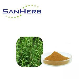 China Carnosic Acid Rosemary Extract Powder , Rosmarinic Acid Rosemary Leaf Powder on sale