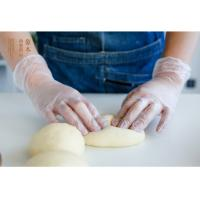 Food Safe Powder Free Vinyl Gloves / Clear Plastic Food Prep Gloves Harmless Odourless Manufactures