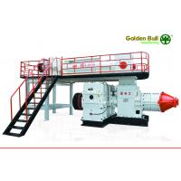 China China Professional Auto clay brick making machine set for sale on sale