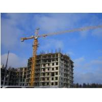 Simple In Structure Cantilever potain tower lifting cranes components specification Manufactures