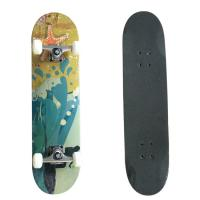 Pro Skateboard  7-ply 100% Canadian maple Skateboard  5inch  Aluminum  truck Manufactures