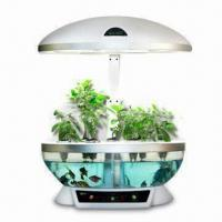 60W Novelty Plant with LED Grow Light, Fish Bowl, Measures 410 x 300 x 620mm Manufactures