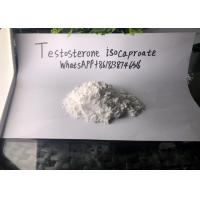 Testosterone Isocaproate Legal Injectable Steroids Drug Assist Manufactures
