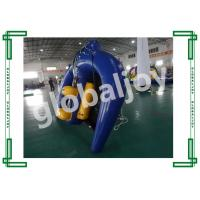 Flying manta ray for water game / Inflatable towable water sports / Water ski