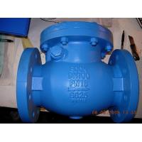 Stainless steel ANSI 125 / 150 swing check valve ISO & PED certificate 2 years warranty Manufactures
