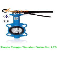 High Performance Wafer Lug Type Butterfly Valve Carbon Steel API609 For Water Manufactures
