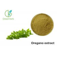 China Oregano Herb Origanum Vulgare Extract Powder Whole Herb Parts Healthcare on sale